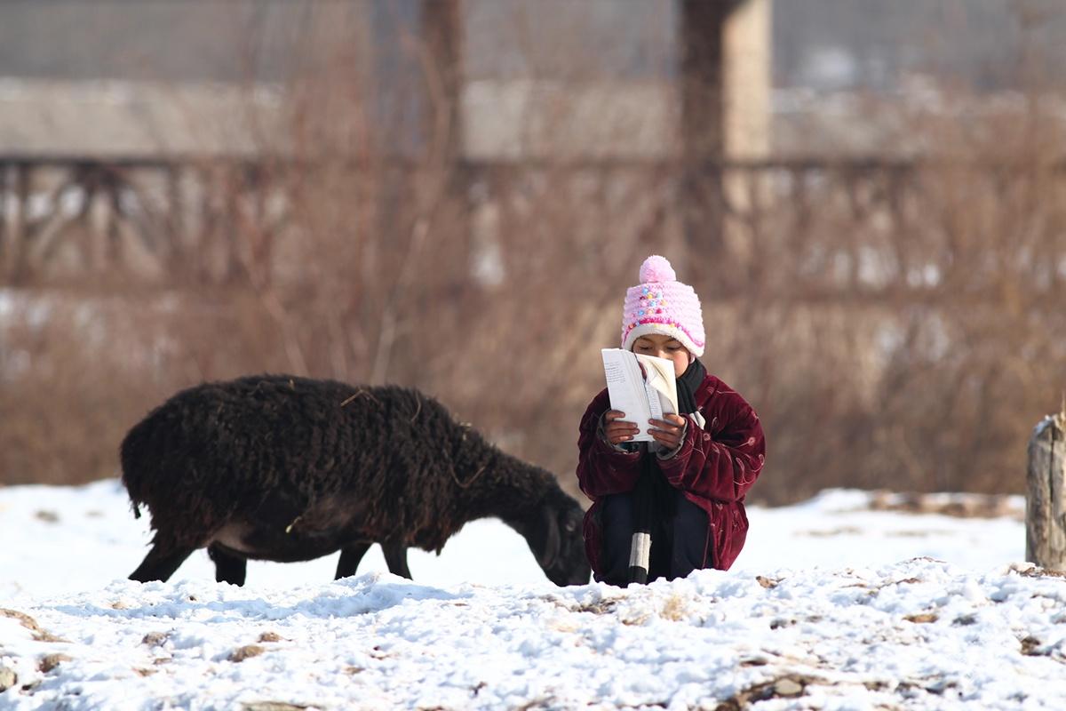 骑着毛驴去赶集——喀什摄影人尚志元摄影作品展第三